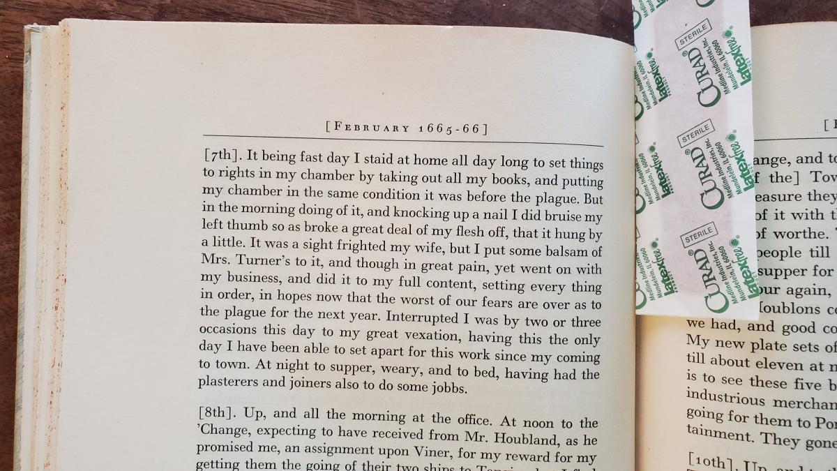 Samuel Pepys DIY 1