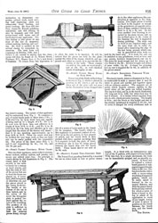 Issue No. 15 - Published June 29, 1889 12