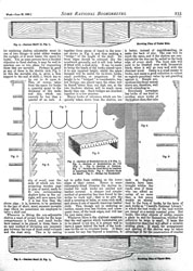 Issue No. 15 - Published June 29, 1889 13
