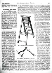Issue No. 21 - Published August 10, 1889 9