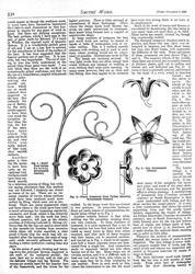 Issue No. 34 - Published November 9, 1889 8