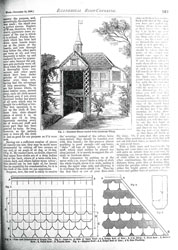 Issue No. 35 - Published November 16, 1889 8