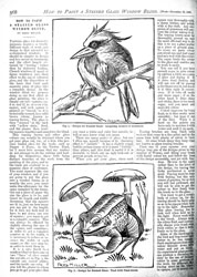 Issue No. 36 - Published November 23, 1889 8