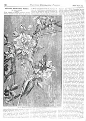 Issue No. 63 - Published May 31, 1890 7