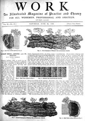 Issue No. 67 - Published June 28, 1890 4