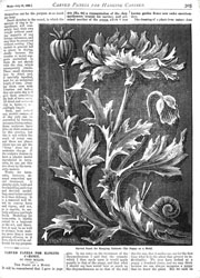Issue No. 71 - Published July 26, 1890 9