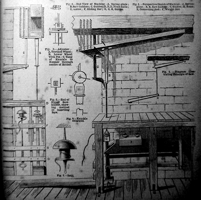 Issue No. 87 - Published November 15, 1890 7
