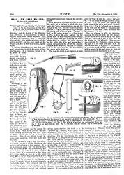 WORK No. 194 - Published December 3 1892  7