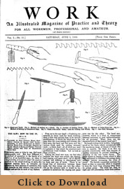 Issue No. 11 - Published June 1, 1889 5
