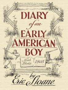 Diary of an Early American Boy - Softcover